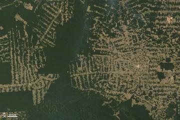 amazon_deforestation_2010214.jpg