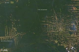 amazon_deforestation_20000730.jpg