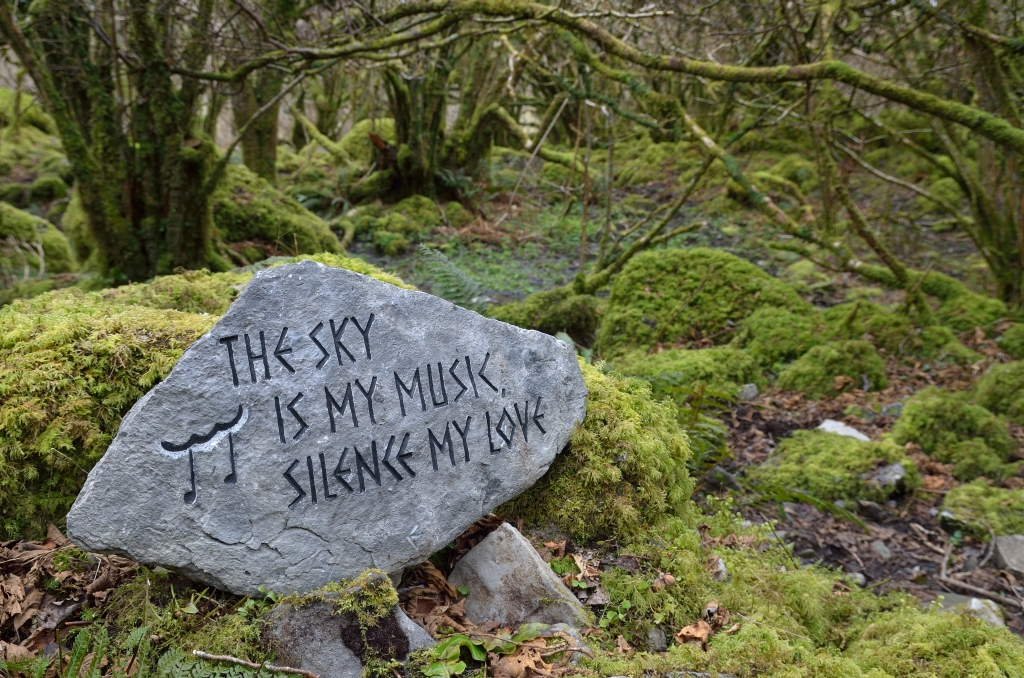 True words! Near the holy well on foot of Slieve Carran.