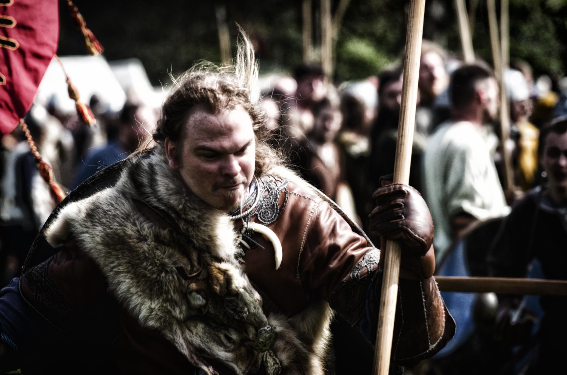 The wolf of Clontarf