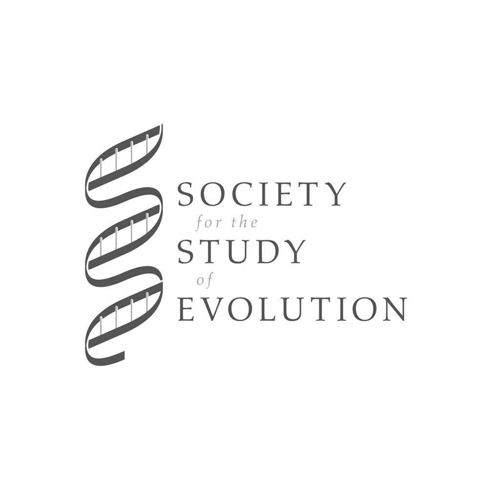 SSE_Logo.jpg