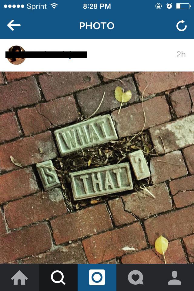 brick insta2.jpg