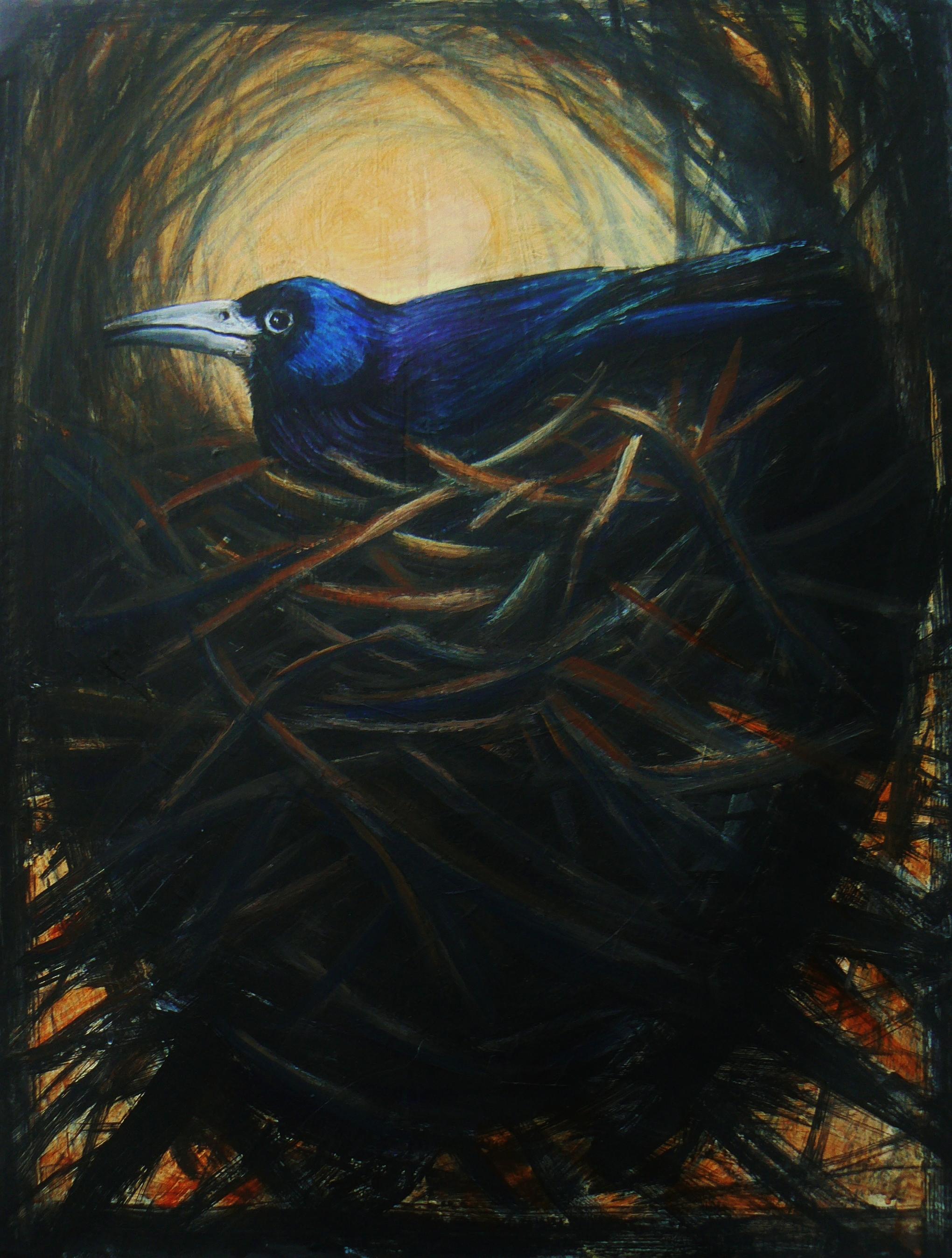 Nesting Rook 2014