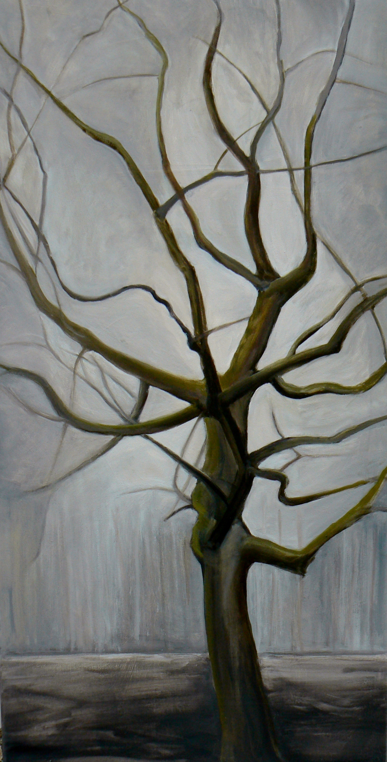 Oak in Tarmac 2011