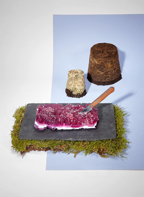 1 Grazing Steak_Web.jpg