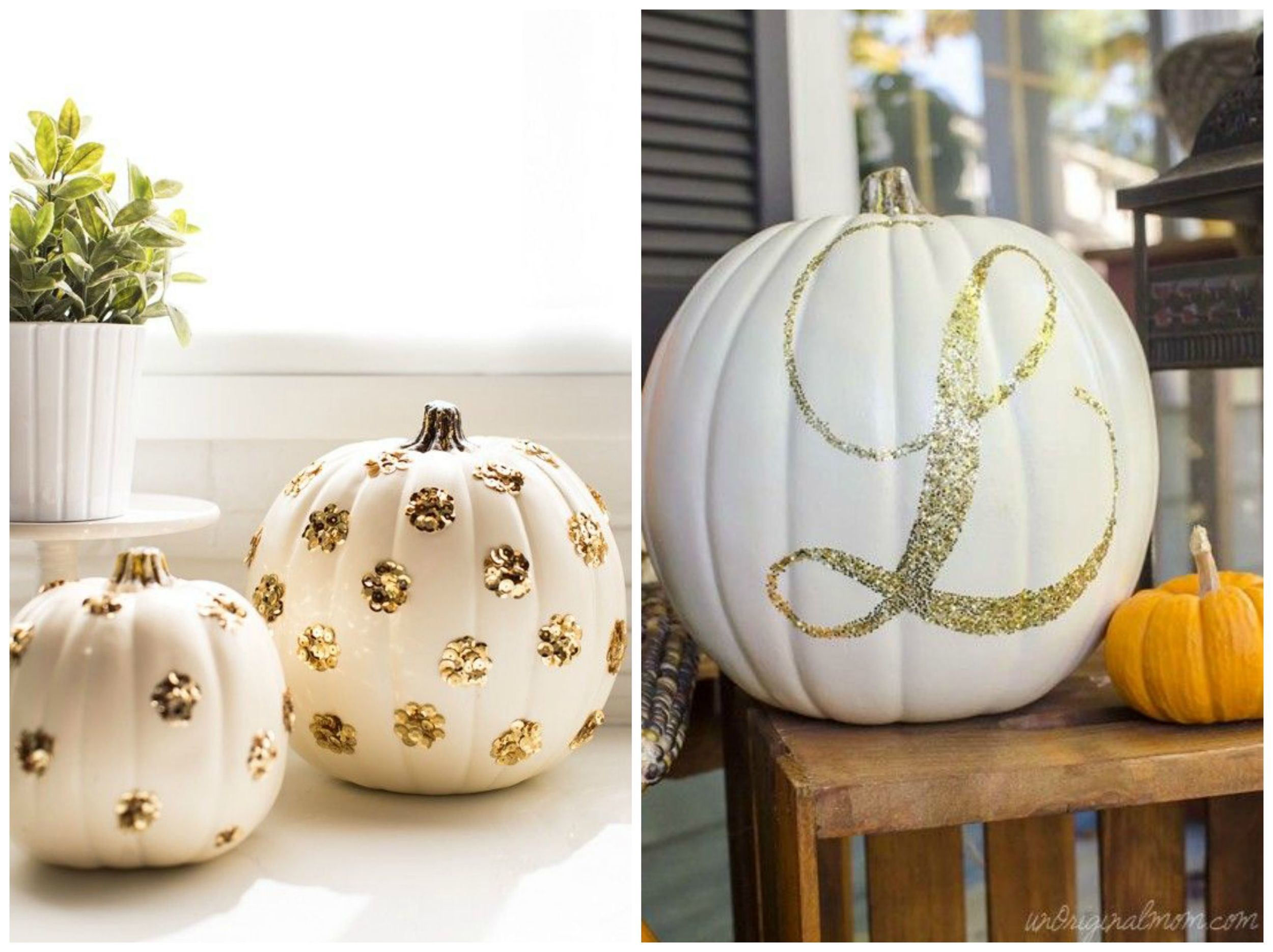 Sugar & Cloth ;  The Glitter Guide . Your pumpkins don't have to be orange! Painting and/or glittering them is a great way to create a fall vibe while sticking to your wedding color palette.