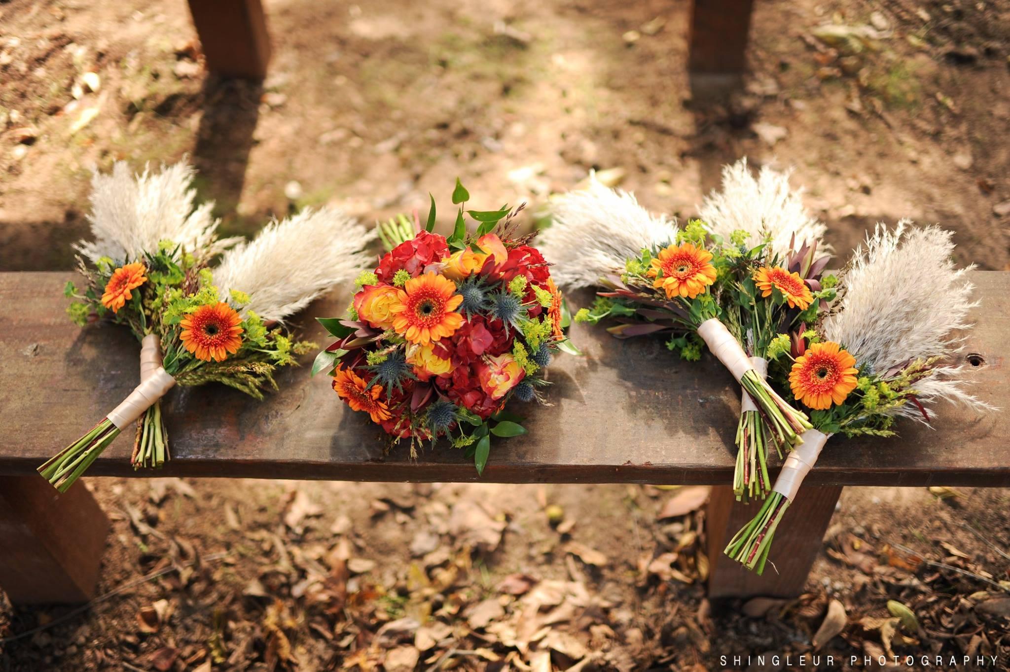 Shingleur Photography , from  Hatley + Charles ' wedding