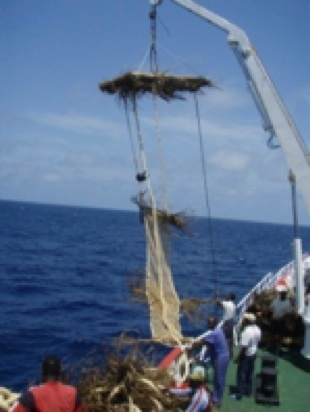Example: Non-entangling FAD constructed with biodegradable materials including palm fronds cover and small-mesh jute netting (Photo: ANABAC/AZTI)