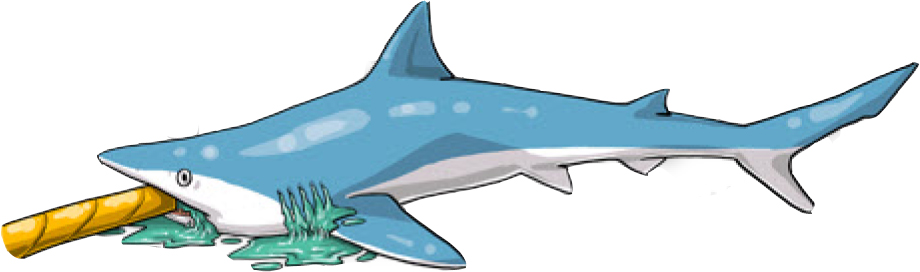 Inserting a seawater hose in its mouth might improve an animal's chance of survival if, for an unavoidable reason, the shark cannot be released right way. (Poisson et al, 2012)