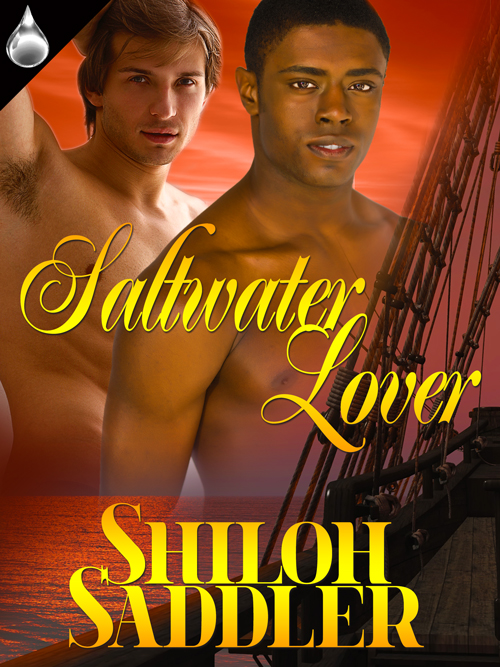 Click on the Cover to go to Shiloh's Blog!