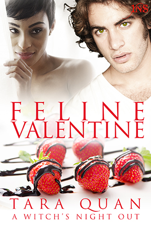 Feline Valentine, available at  Amazon (US) ,  Amazon (Other) ,  ARe ,  iTunes , and  B&N .