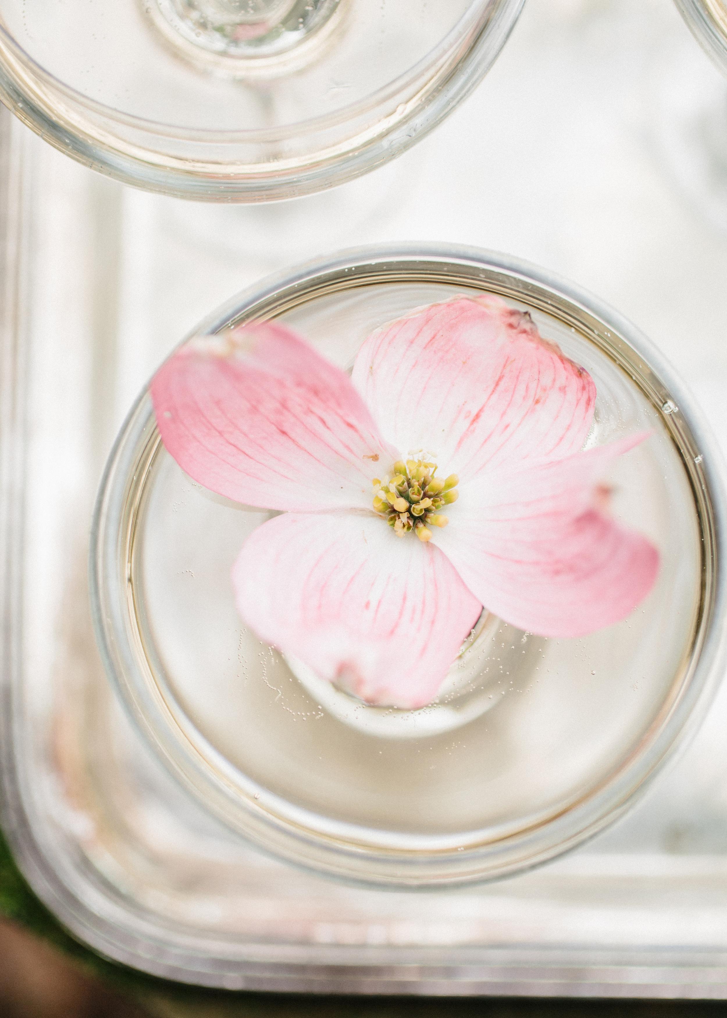 HNP-Modern-Fairytale-Spring-Wedding-Styled-Shoot_019.jpg