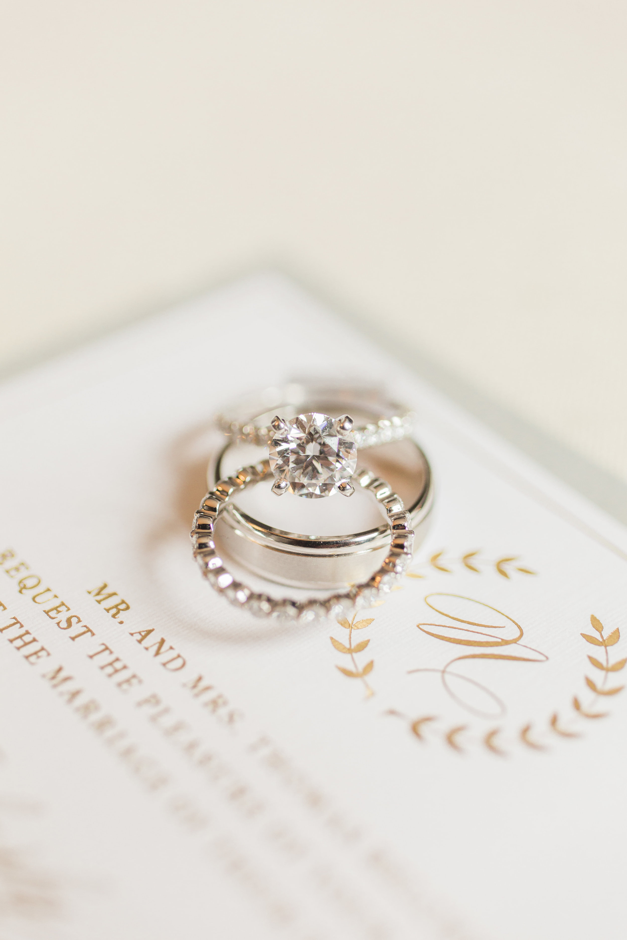 Hudson-Nichols-Black-Tie-Bride-Philadelphia-Waterworks-Wedding-Pave-Diamond-Engagement-Ring03.jpg