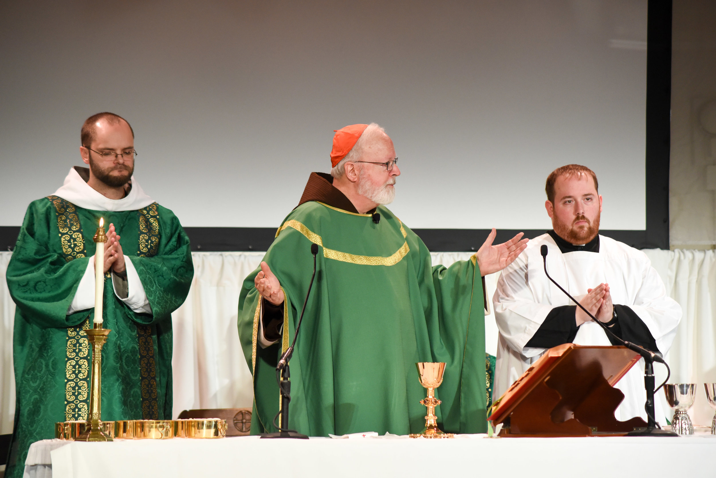holy-mass-celebrated-by-sen-cardinal-patrick-omalley-ofm-cap-archbishop-of-boston_24824539757_o.jpg