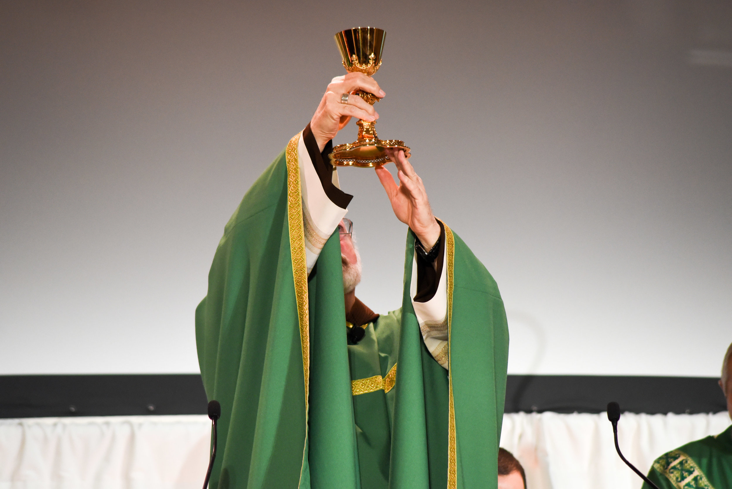holy-mass-celebrated-by-sen-cardinal-patrick-omalley-ofm-cap-archbishop-of-boston_38984330404_o.jpg