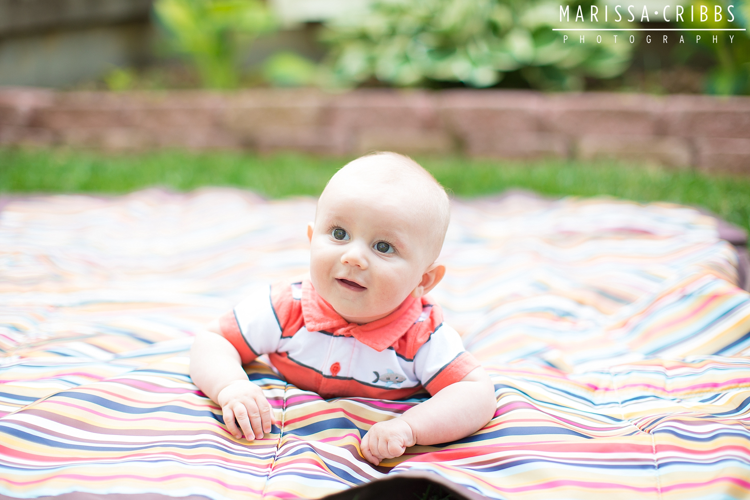 Kansas City Baby Photographer | Marissa Cribbs Photography