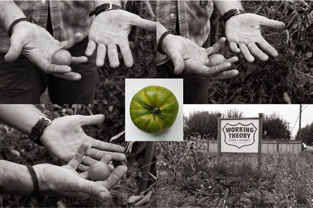 Justin Green - Working Theory Farm
