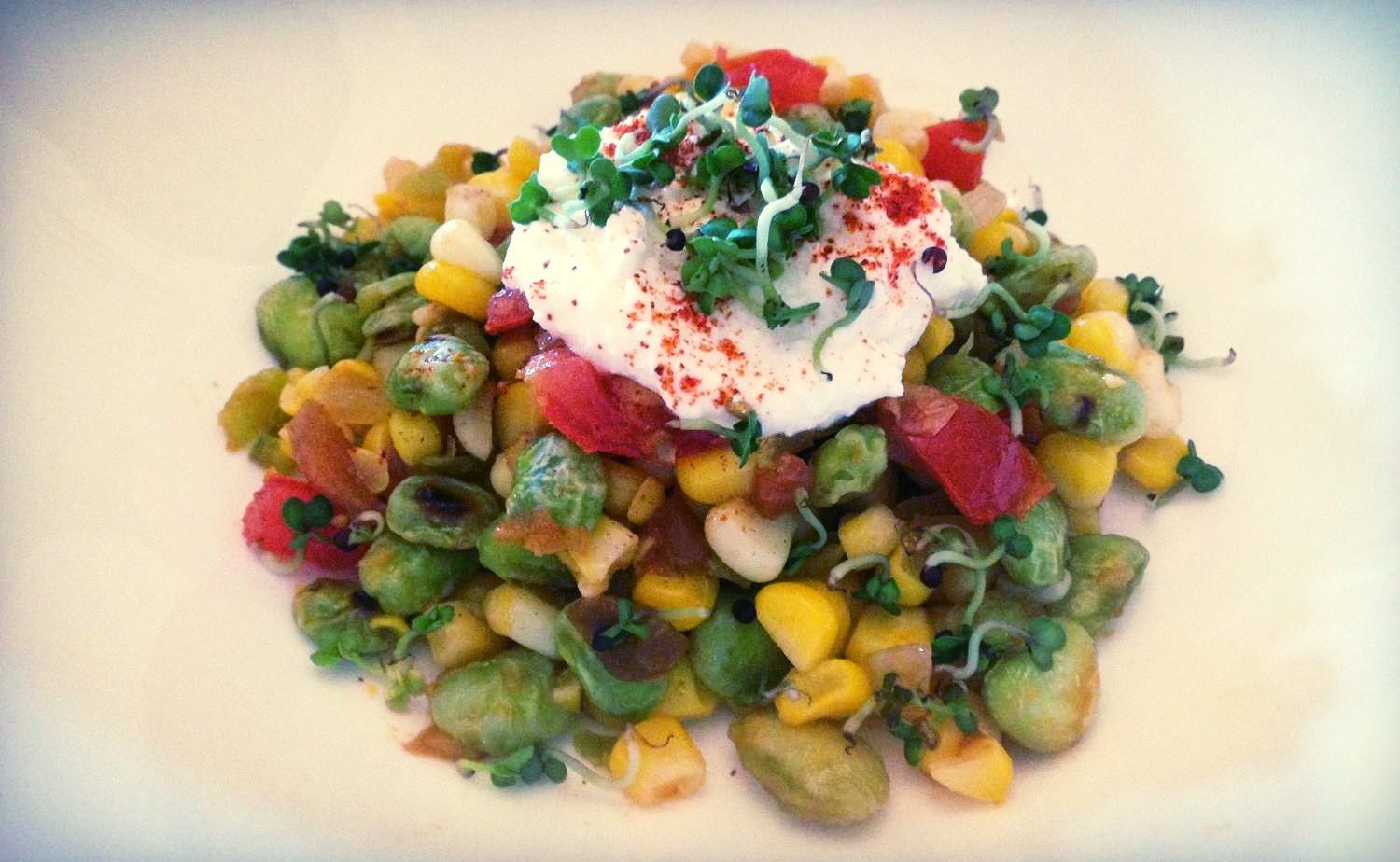 Meatless Monday never tasted so good!