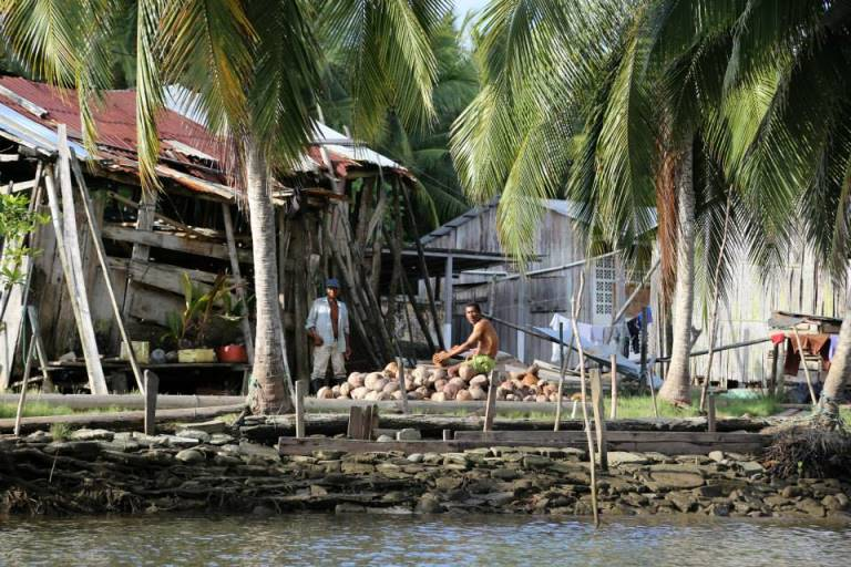 Residents peel coconuts for sale near the Island of Limones, in the province of Esmeraldas , Ecuador.