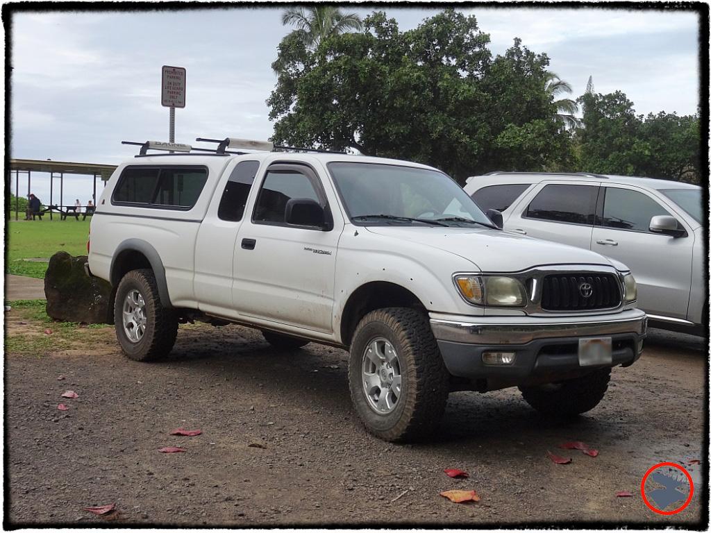 Blog Post_Toyotas in Kauai_1_April 2014.jpg