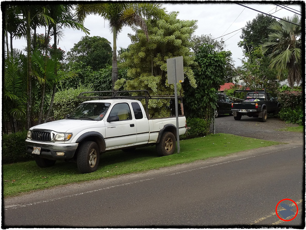 Blog Post_Toyotas in Kauai_4_April 2014.jpg