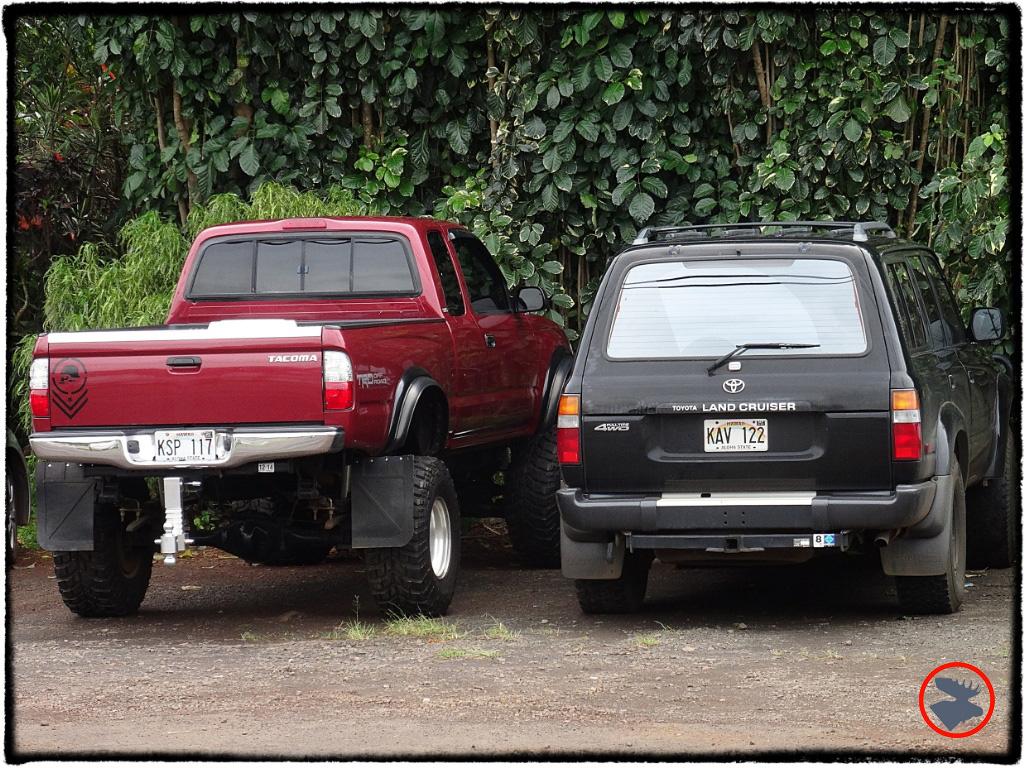 Blog Post_Toyotas in Kauai_11_April 2014.jpg