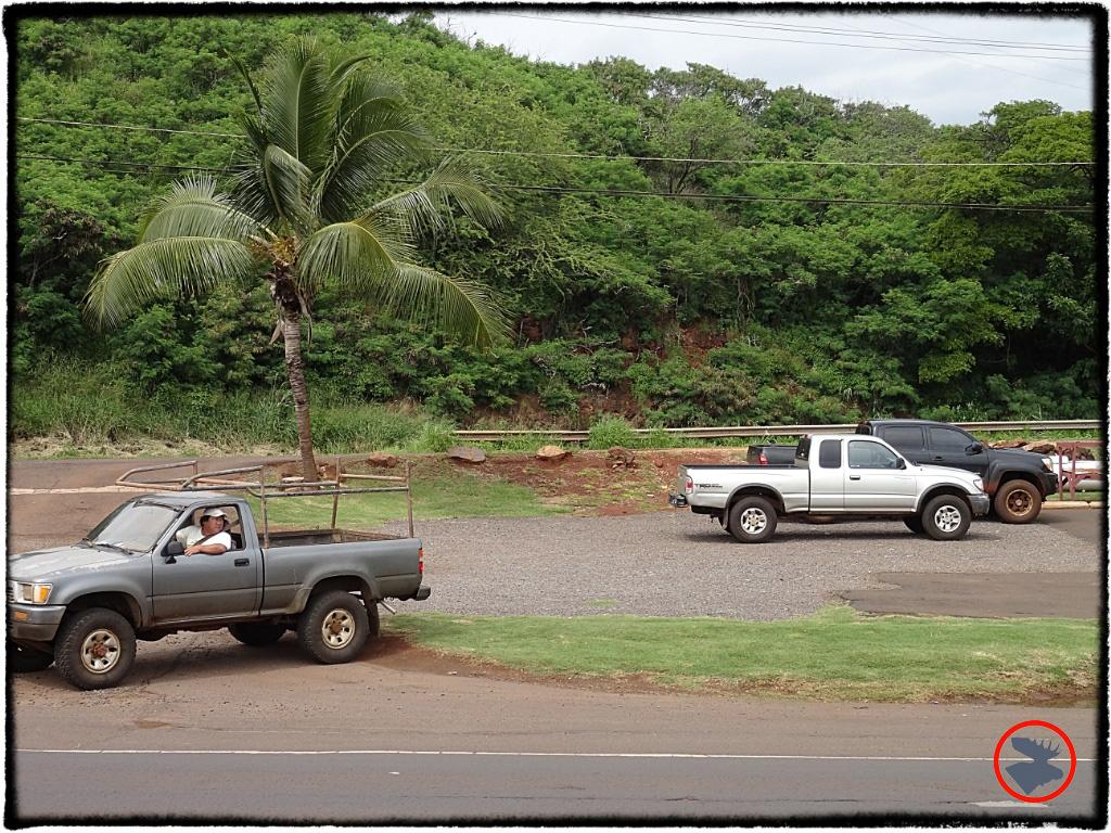 Blog Post_Toyotas in Kauai_12_April 2014.jpg