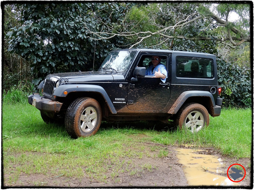 The Jeep Wrangler got us (into and) out of Kauai's mud.