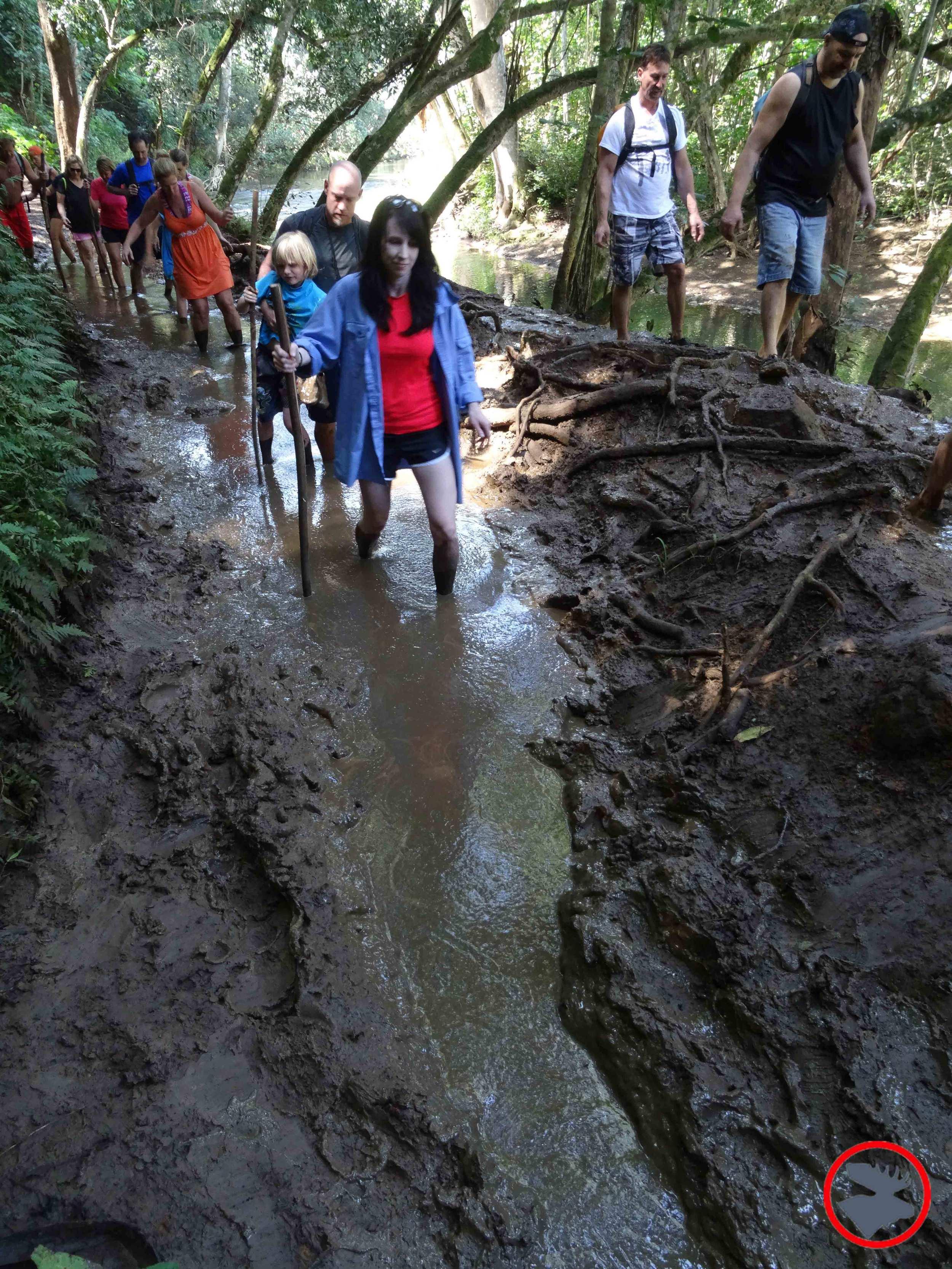 Muddy-Trails.jpg