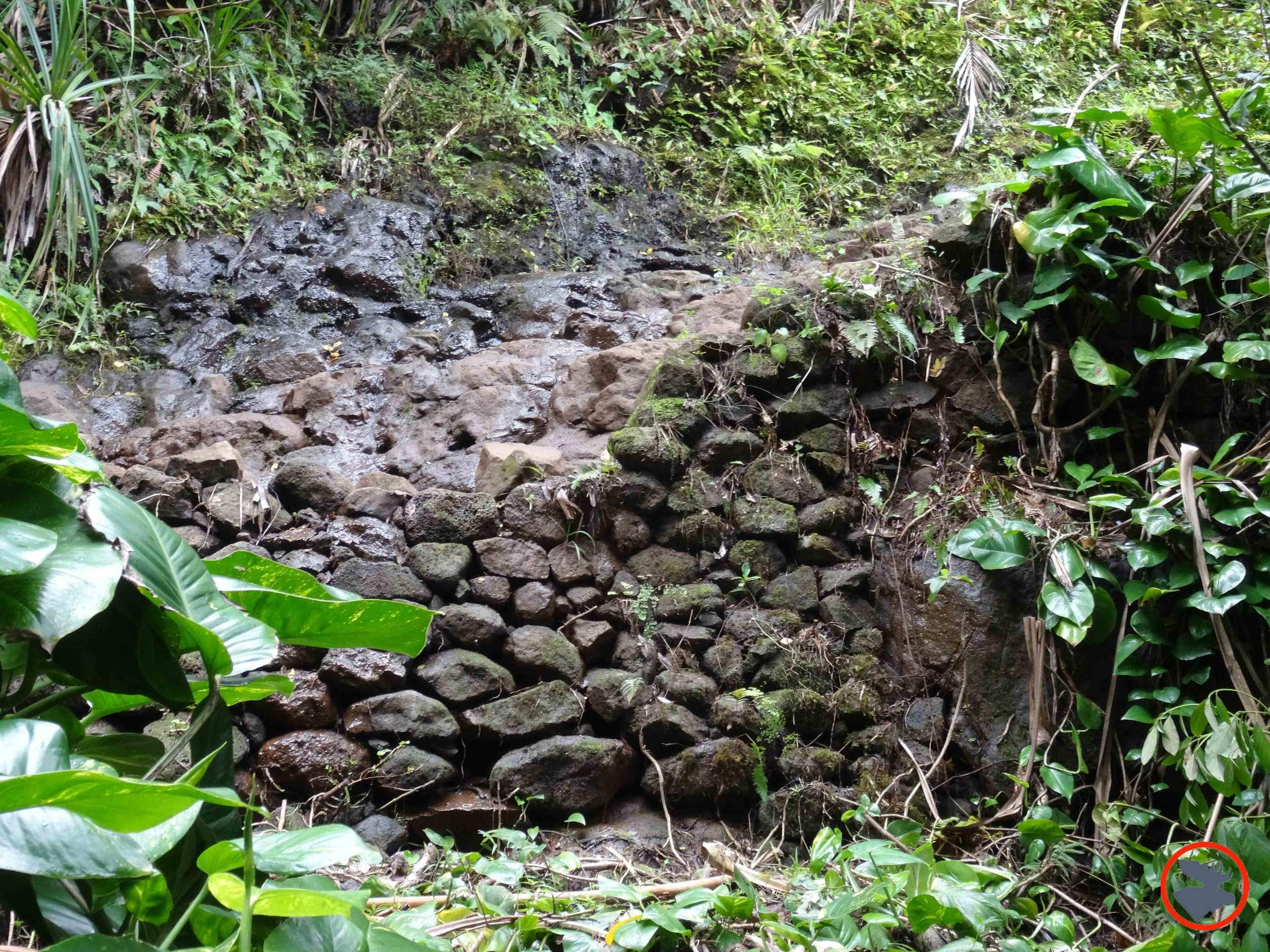 Kalalau-Trail-on-Napali-Coast2.jpg