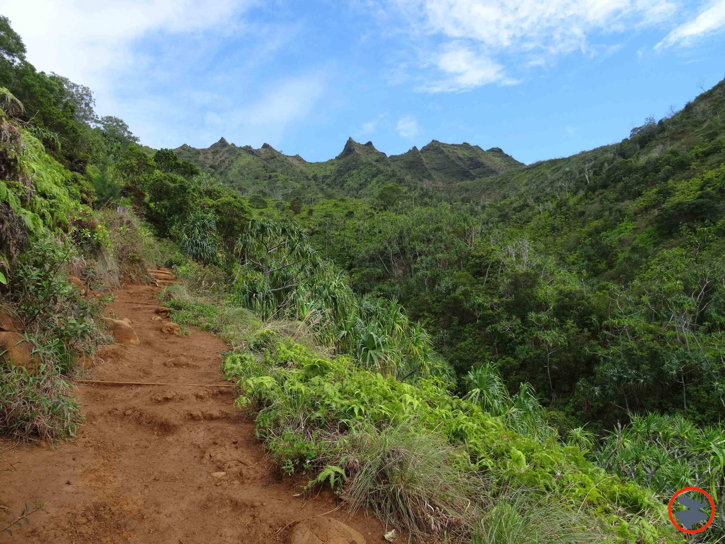 Kalalau-Trail-on-Napali-Coast.jpg