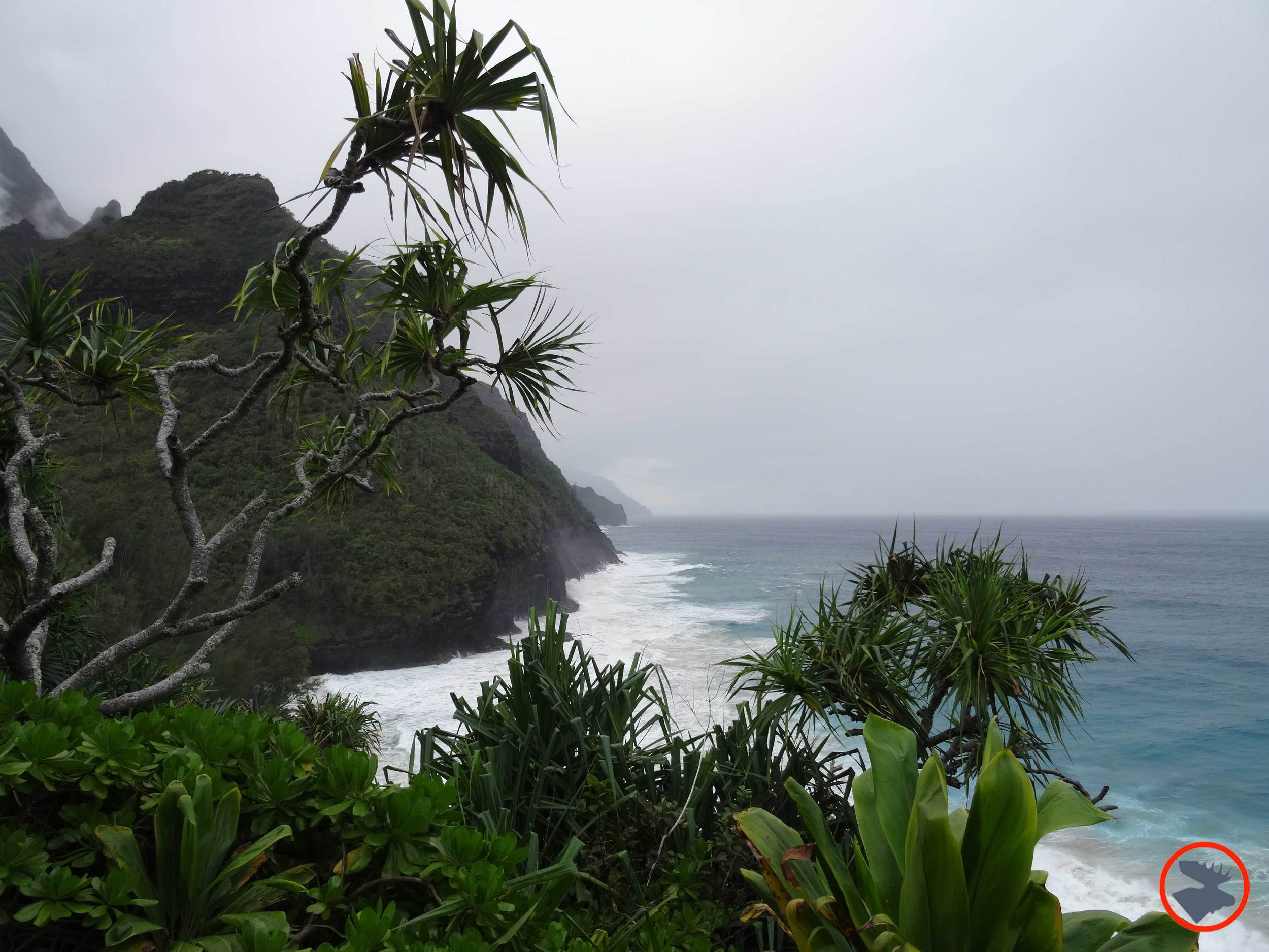 Napali-Coastline4.jpg