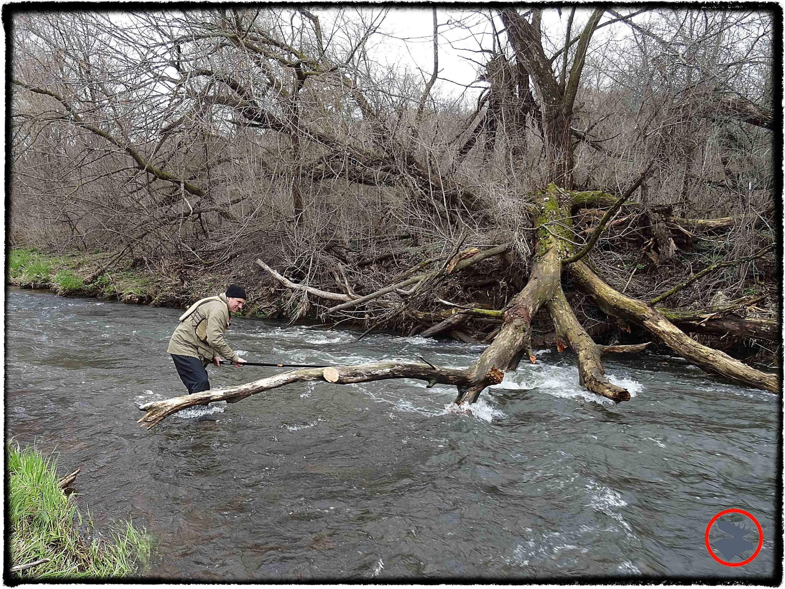 BMP-Post_Kinnickinnic-River_Scott-Cutting-Tree_May-2014.jpg