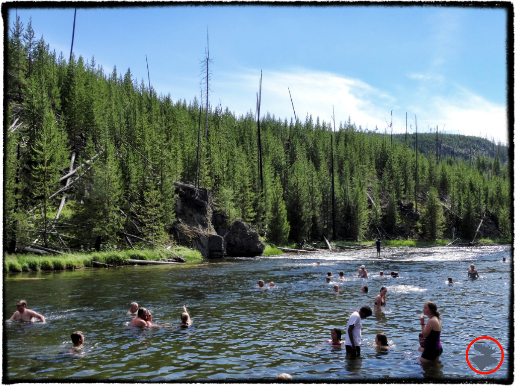 Firehole River swimming hole--a perfect break from the car when you're touring Yellowstone National Park.