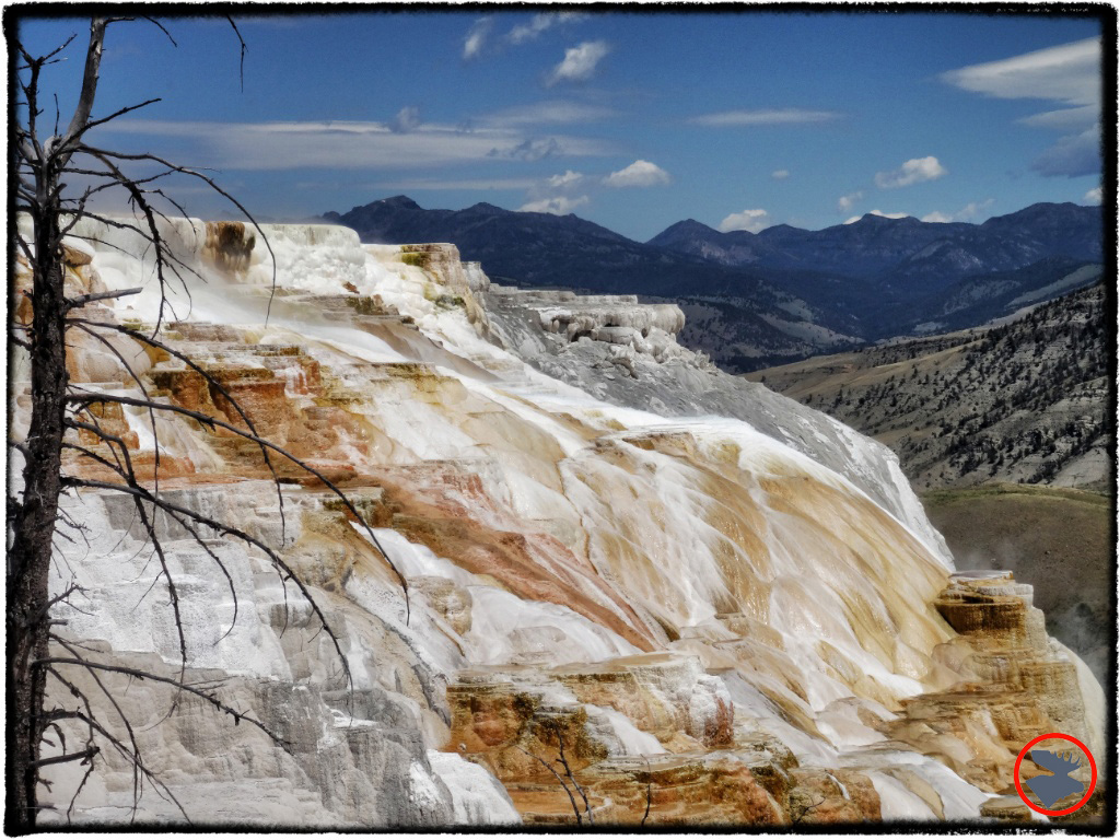 BMP-Post_Expedition-Log_Yellowstone_Mammoth-Hot-Springs2_October-2014.jpg