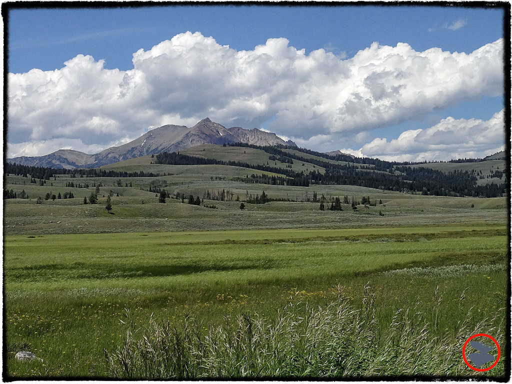 BMP-Post_Expedition-Log_Yellowstone_Mountains_October-2014.jpg