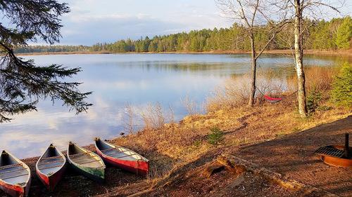 Canoeing Minnesota's Cloquet River: Paddling into the Dark — Bull