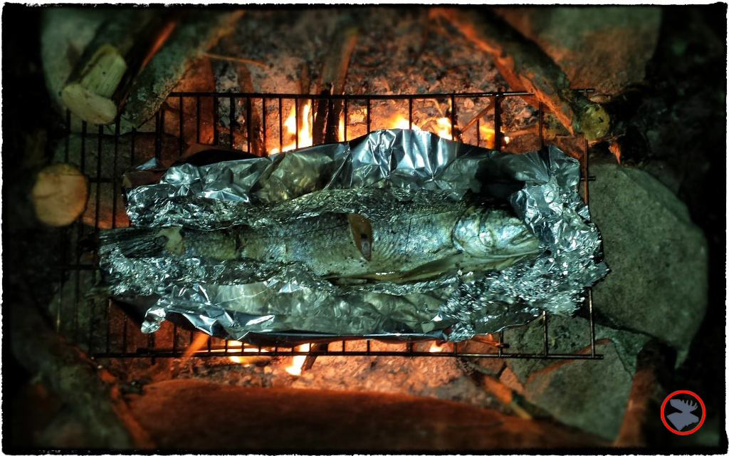 BMP-Post_Expedition-Log_Quetico-_Trout-on-grill_August-2015.jpg
