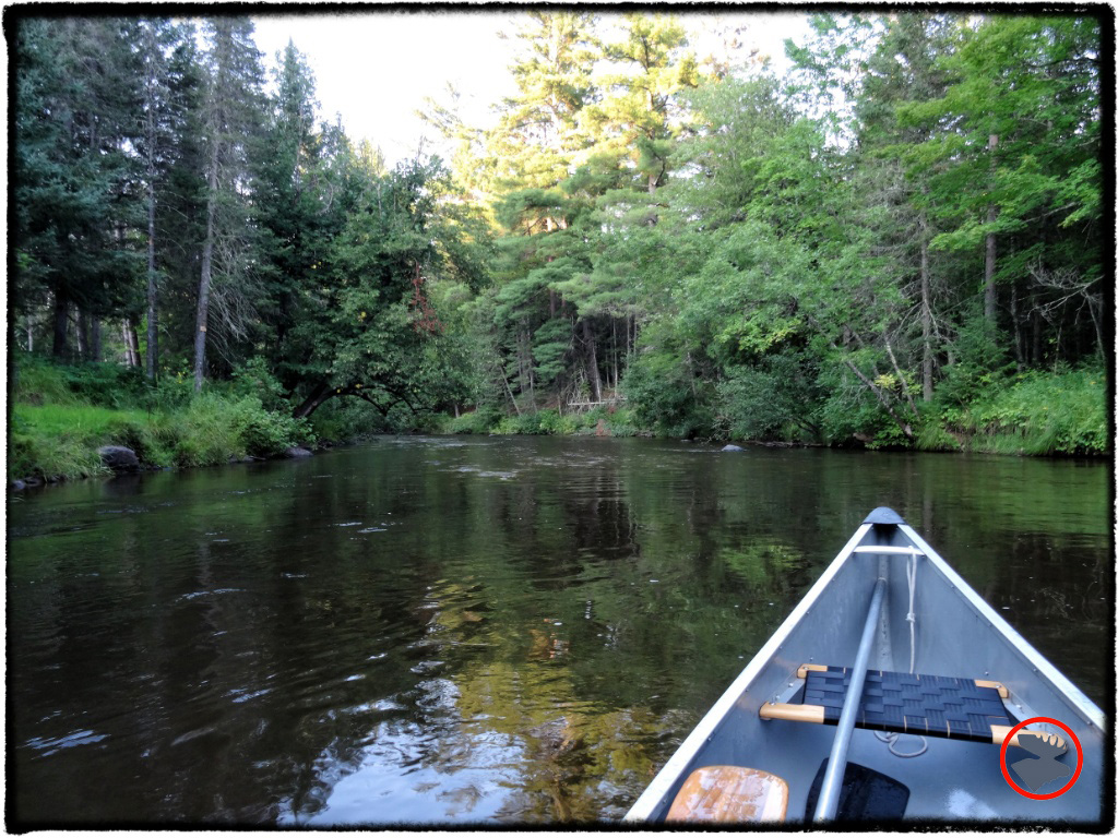 Paddling the scenic and historic Bois Brule River.