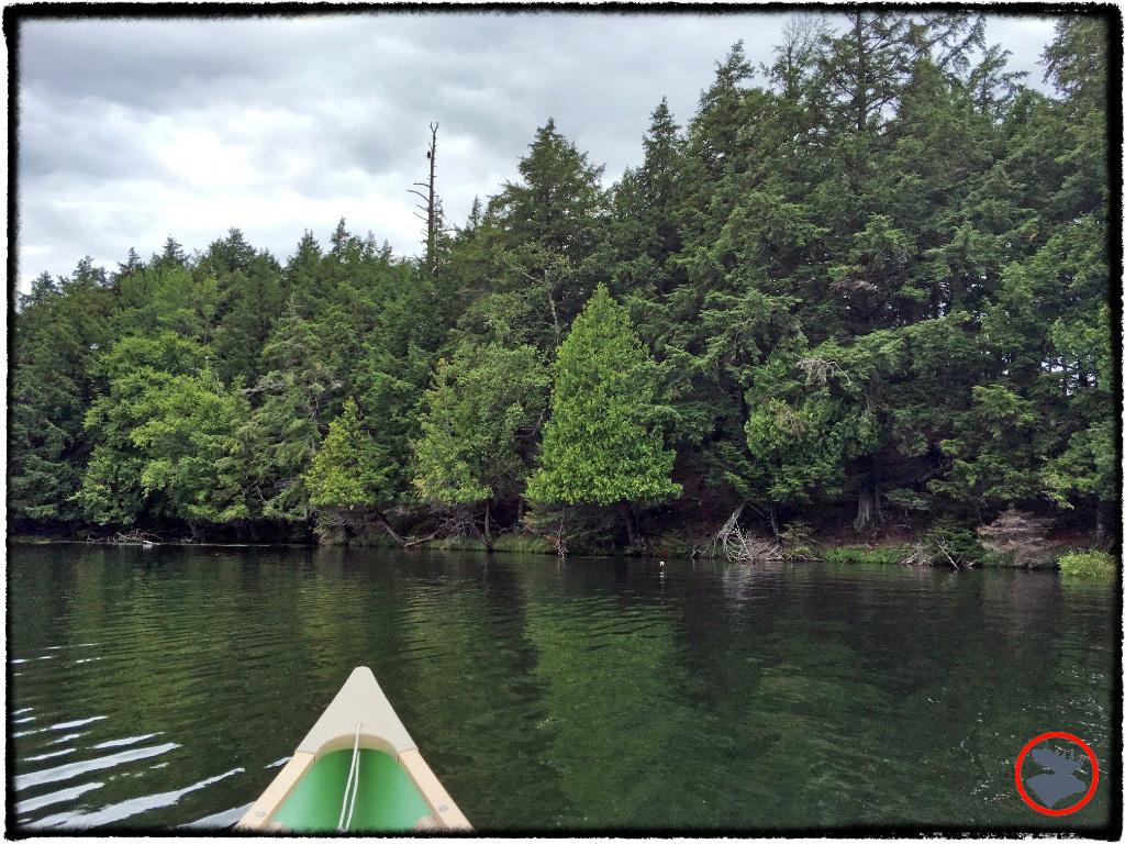 Canoeing Sylvania