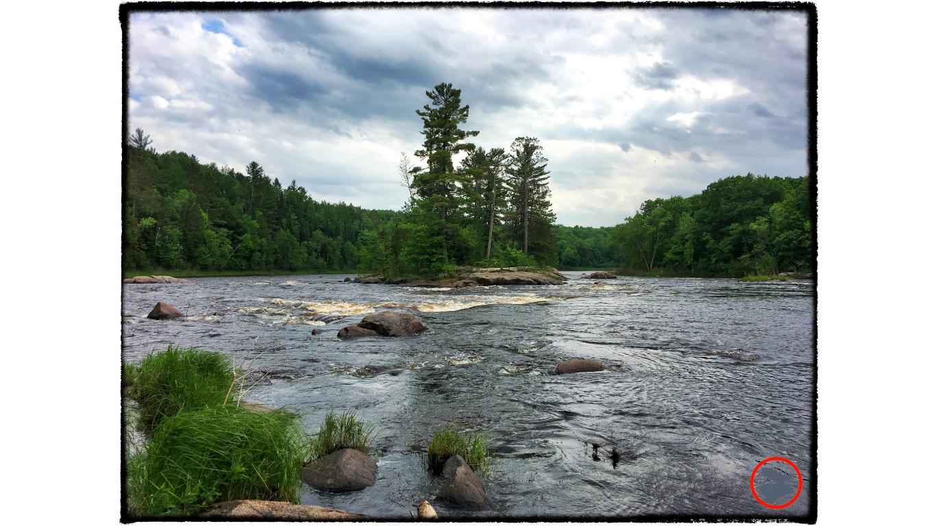 BMP-Post_Expedition-Log_Flambeau-River_Cedar-Rapids_June-2017.jpg