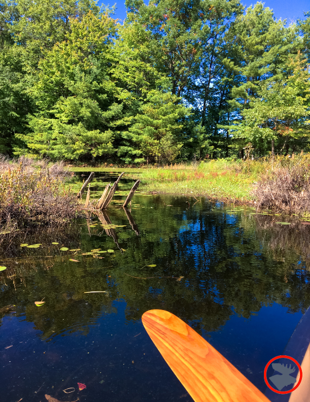 BMP-Post_Expedition-Log_Loyhead-Canoe-Route_Scenery2_9-10-17.jpg