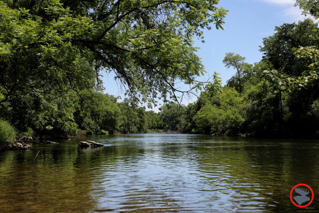 Paddling the Cannon River | Bull Moose Patrol