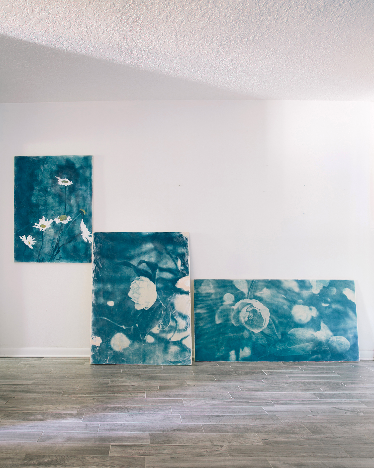 Wallflower Series - Works about mental illness, sexual abuse, and relationships