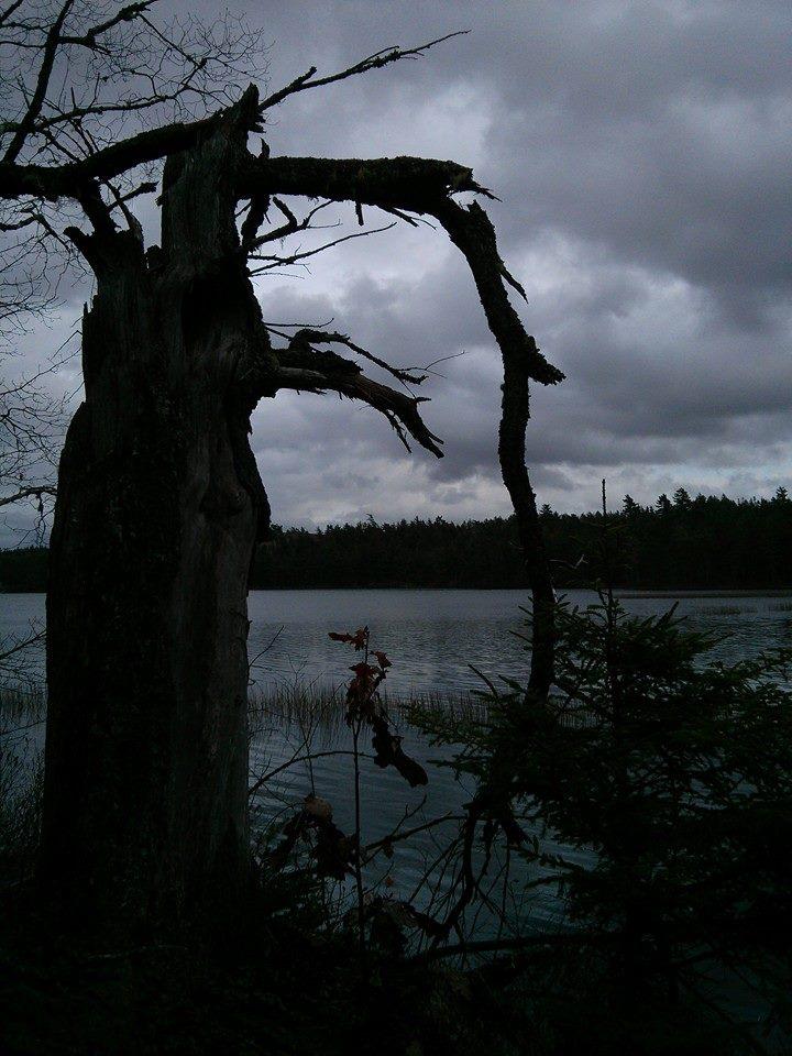 CLOC Trail - lake.jpg