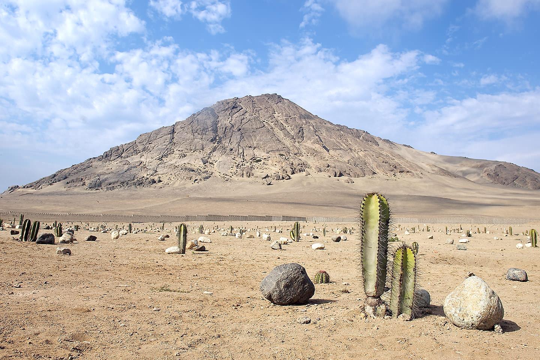 The desert landscape of Trujillo, Peru