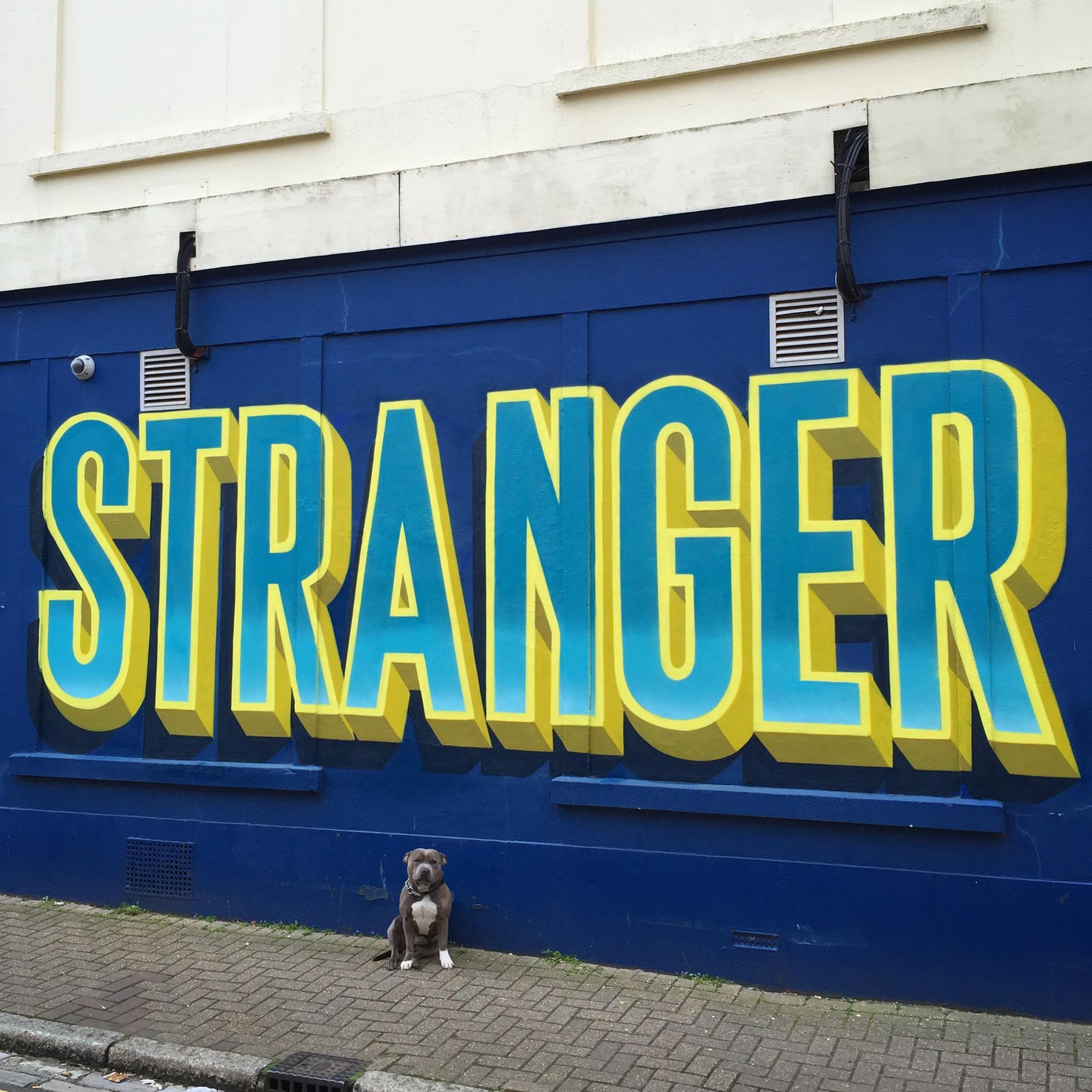 GARY STRANGER -