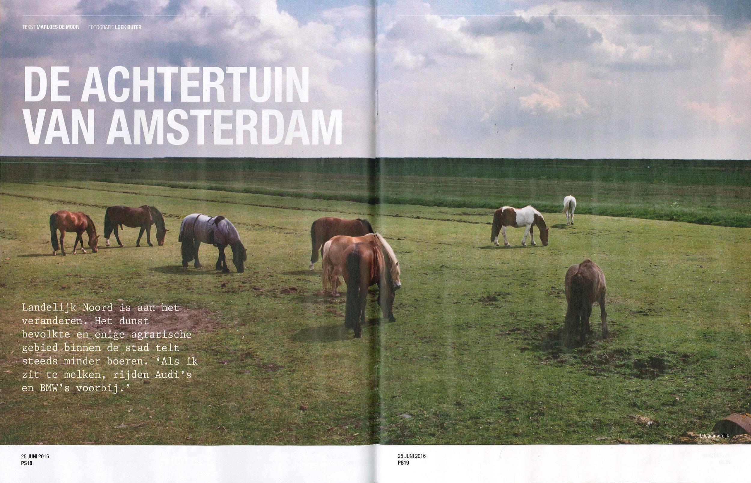 Parool_Achtertuin van Amsterdam_2.jpg
