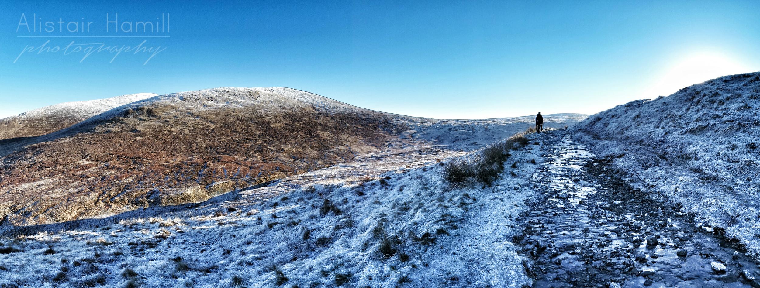 Ott track in the frost.jpg