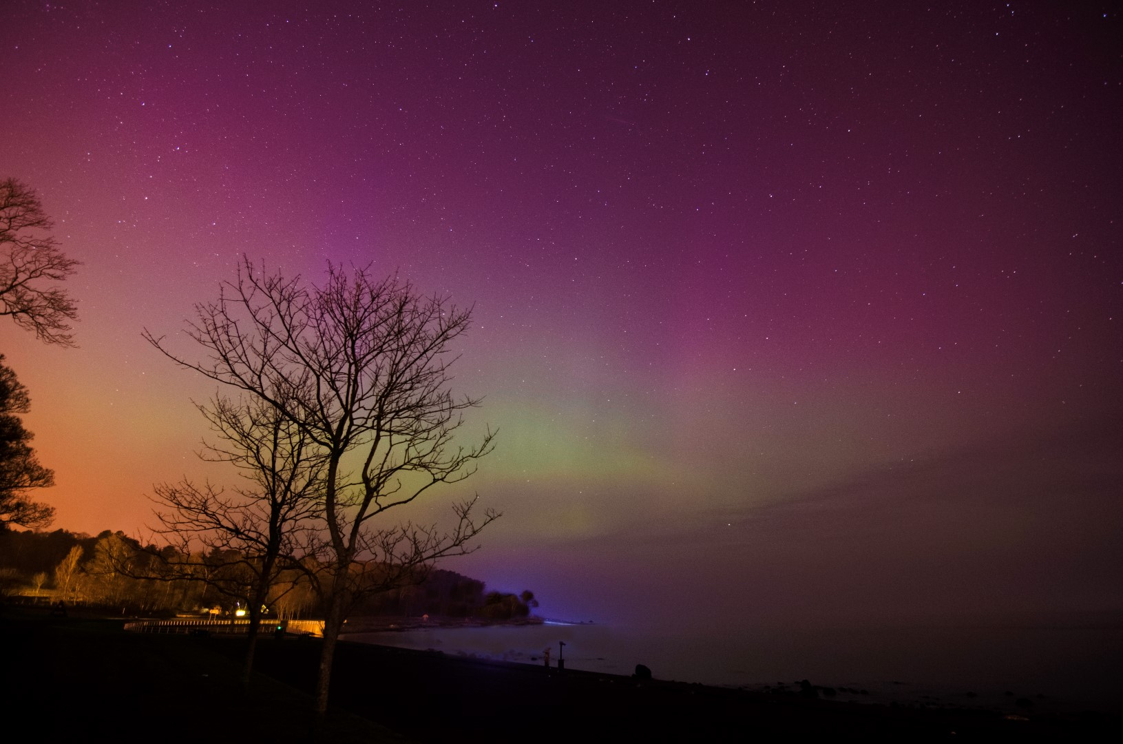 The display sneaks past the light pollution at Carnfunnock